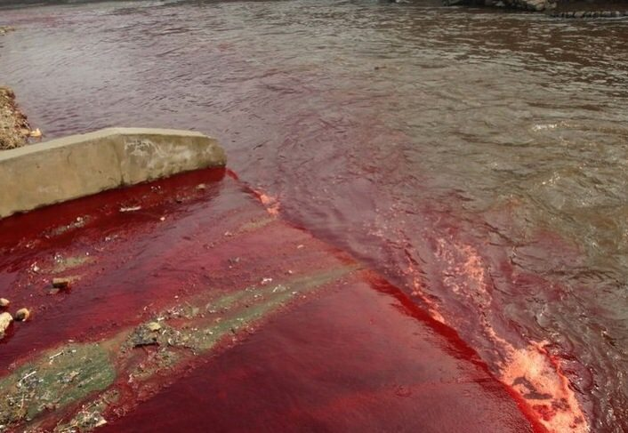 Blutrot ist das Wasser