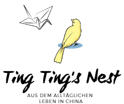 Ting Ting's Nest