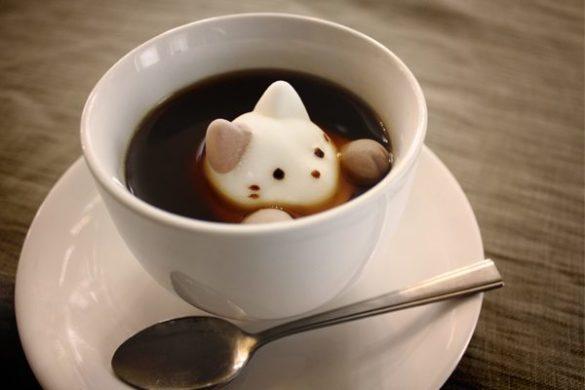 Die Marshmallow Kaffee Katze