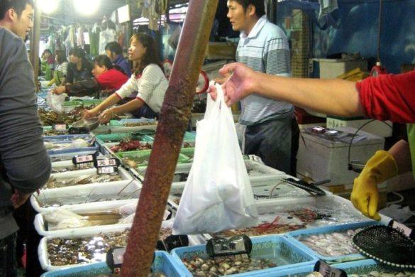 Zhuhai Wanzai Seafood Street und die Elefantenrüsselmuschel