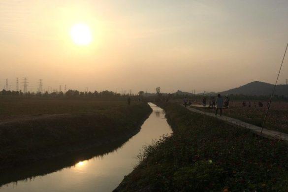 Ningbo Sun Lake Blumenmeer im Jiangbei Distrikt